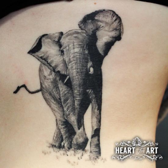 6 elephant-tattoo-healed