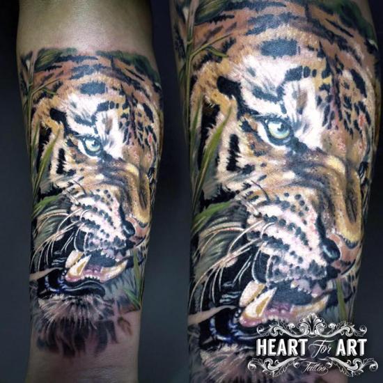 colour-tiger-tattoo